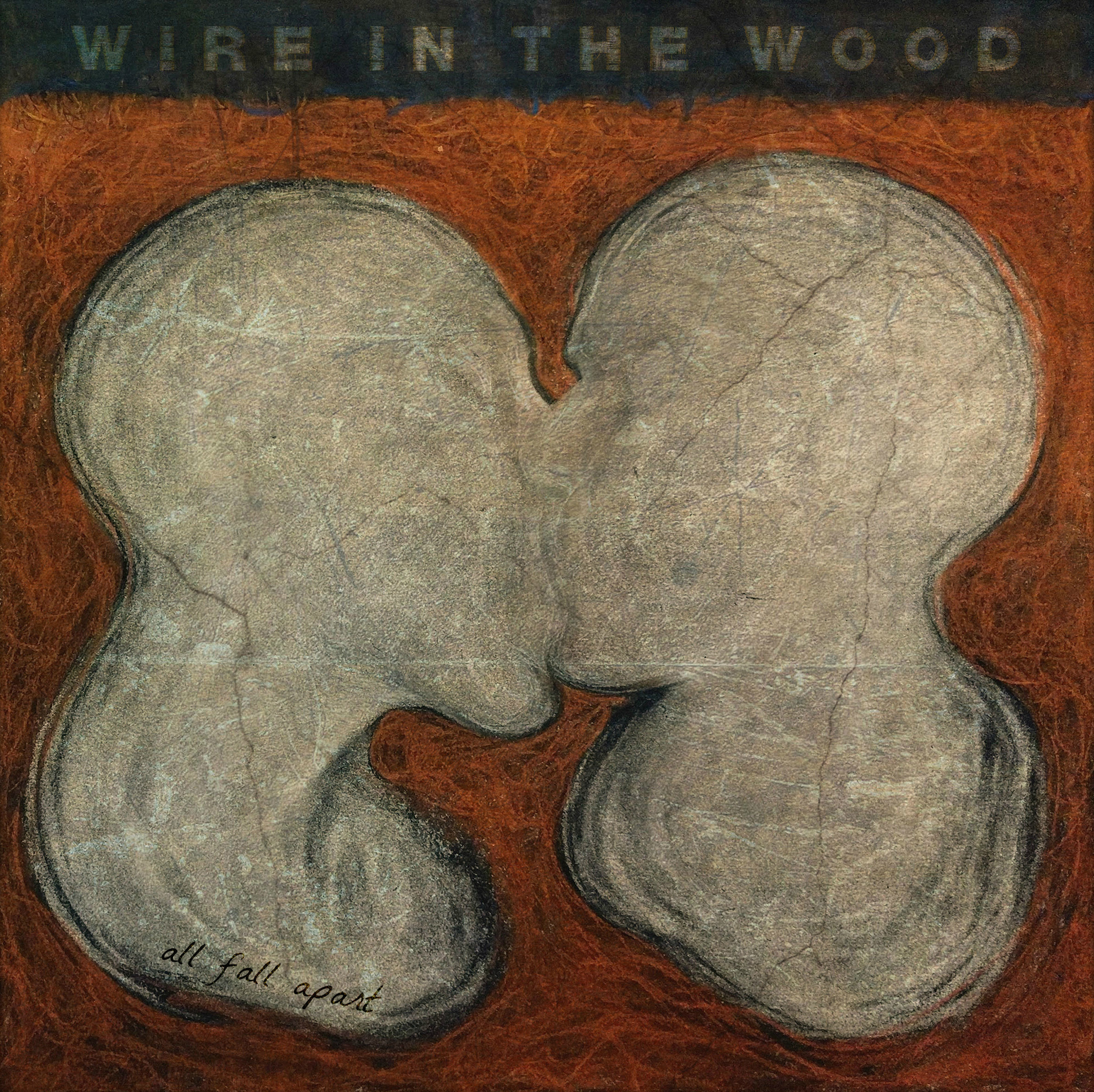Wire in the Wood, Progressive String Band